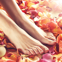 Spa composition of female feet and petals