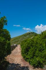 Collina di Formia