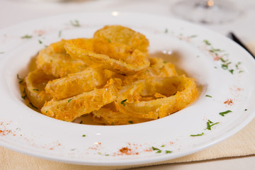 Tasty Fried Onion Rings on White Plate