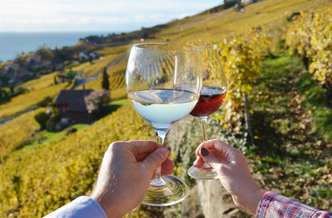Two hands holding wineglases against vineyards in Lavaux region,
