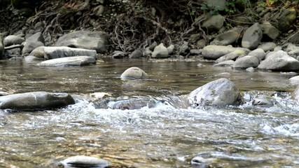 Ruscello, corrente e rapide, corso di acqua