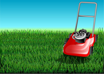 grass and mow