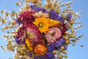 Bunter Blumenstrauß - Trockenblumen - Strohblumen