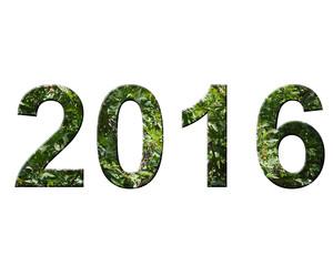 yeşil 2016