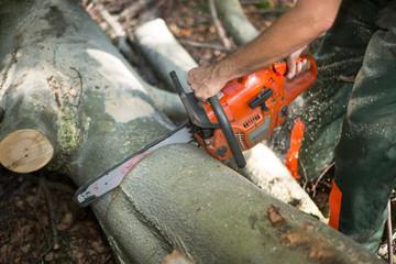 Waldarbeiter mit Kettensäge