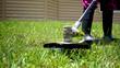 Lawn care - 71338249