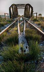 Railway bridge in morning sun