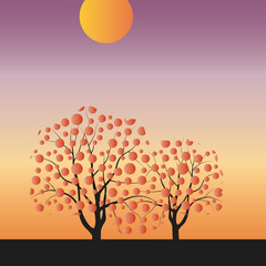Vector drawing of autumn sunset