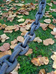 Heavy chain above green grass