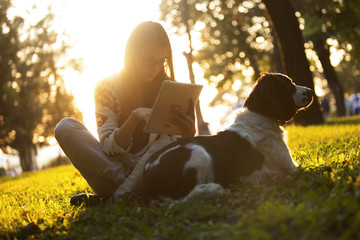 Girl Using Tablet In Park On Grass With Dog At Sunset