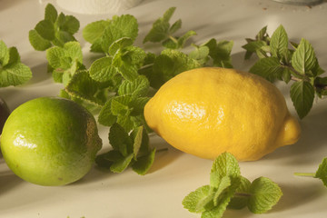 Lemon, lime and mint