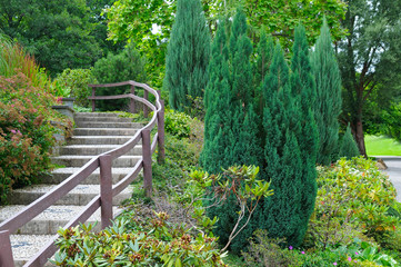 park with stairs and shrubs