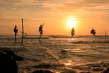 Silhouette of a stick fishermen at sunset, Unawatuna, Sri Lanka
