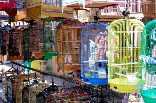 Foto op Plexiglas Indonesië Yogyakarta Bird Market