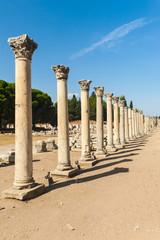 Columns in Ephesus