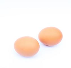 Fresh egg on white background