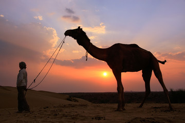 Silhouetted person with a camel at sunset, Thar desert near Jais
