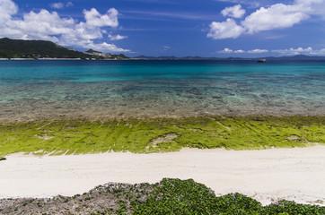瀬底島からの眺め