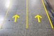 Yellow line - 71351499