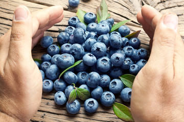 Blueberries in the man's hands.