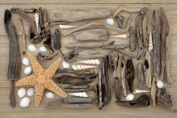 Shell and Driftwood Collage