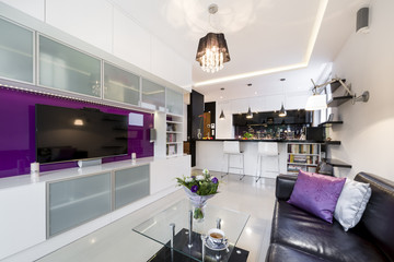 Modern living room with open kitchen
