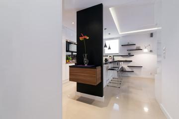 Modern corridor in luxury apartment