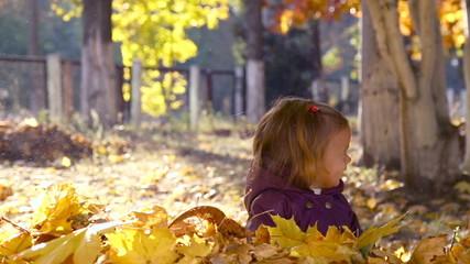 Little girl outdoors in autumn park.