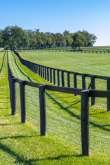 Double fence at horse farm.