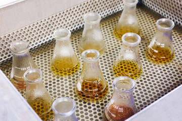 Flasks in water bath