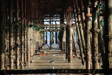 Hastings pier substructure, England