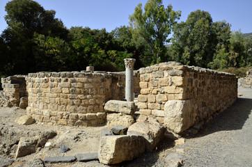 Ancient synagogue ruins in Banias