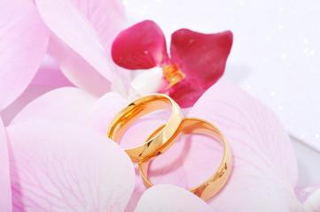 Zwei Ringe mit Orchidee