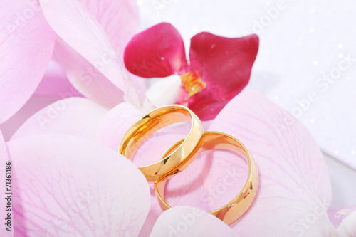 canvas print picture Zwei Ringe mit Orchidee
