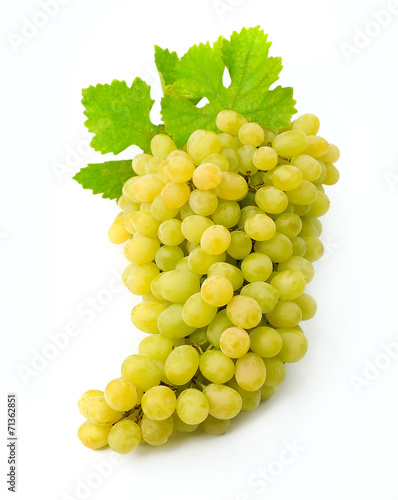 canvas print picture White grapes with leaves