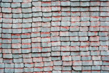 Brick worm