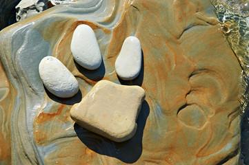 Animal footprint in stone