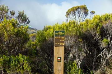 Wanderweg in Reunion