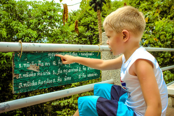 Boy read about Buddhism in the wild at pagoda