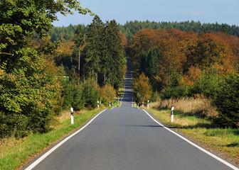 Landstrasse im Herbst