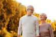 canvas print picture - senior couple in park