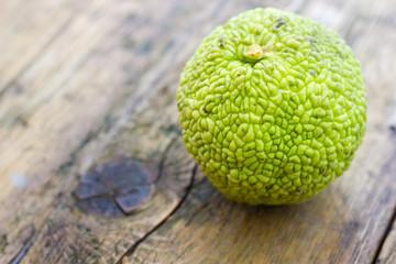 Monkey brain fruit