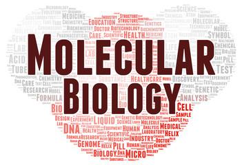 Molecular biology word cloud shape