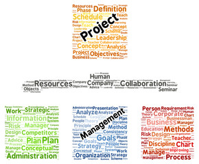 Project management word cloud shape