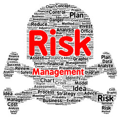 Risk management word cloud shape