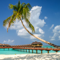 view of the coast of irufushi island with bungalows, maldives