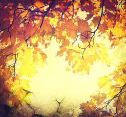 Abstract autumn border background with colorful leaves