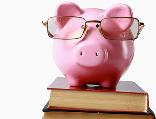 piggy bank with glasses and bookin isolated white background.