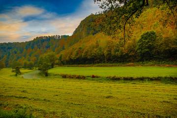 Bedrohte Flusslandschaft in Deutschland