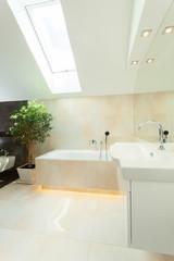 Luxurious bathroom in the loft